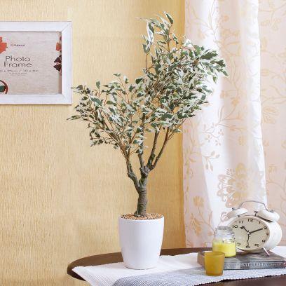 Artificial Green and White Ficus Bonsai Plant in a Ceramic Vase