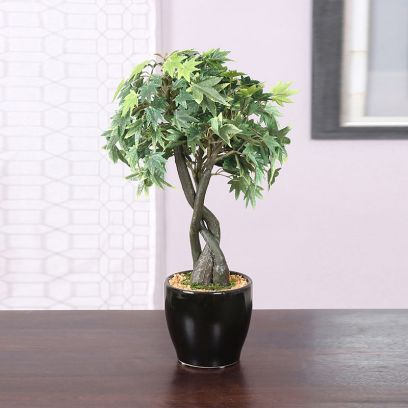 Artificial Japanese Maple Bonsai Plant in a Glossy Ceramic Pot (Green)