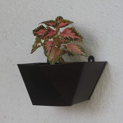Metal Wall Planter Online @ Wooden Street