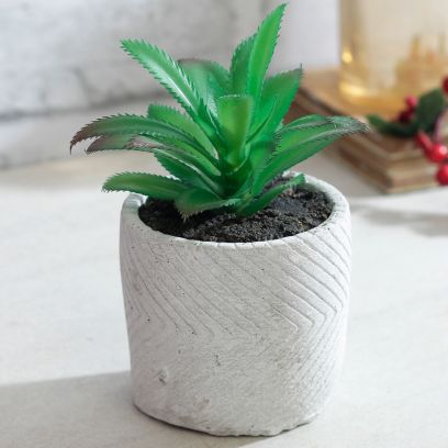 Green and White Artificial Bonsai Plant With Pot