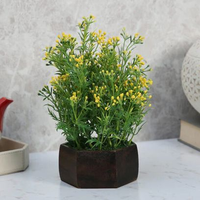 artificial plants online shopping in india
