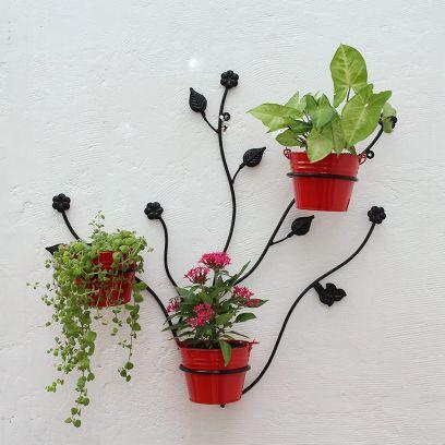 Outdoor plant pots online in India