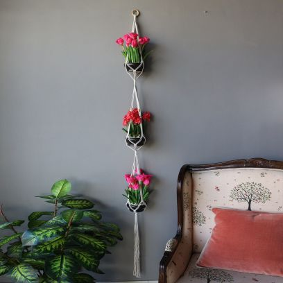 Hanging planters for home decoration