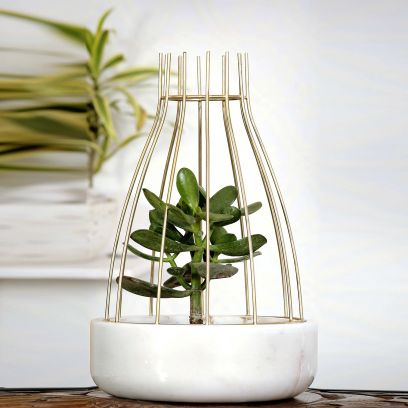 White Marble with Gold Metal Web Planter