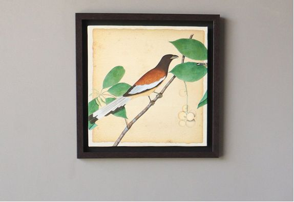 Multicolour Bird Print Framed Wall Painting - 18 x 18 inches
