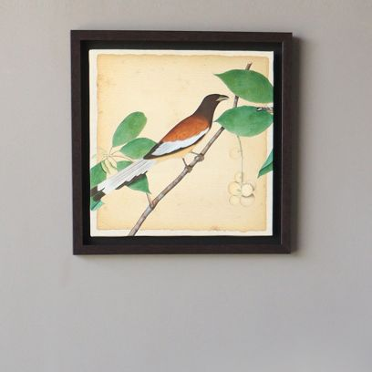 Multicolour Bird Wall Painting For Living Room in India