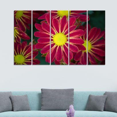 Red Flowers Velvet Laminated Art Panels - Set of 5 Frames