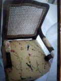 Review Kelvin Arm Chair with Cane (Cotton, Cream Robins)